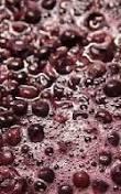 Fermentation raisin - Le Clan des Sens