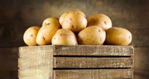 Pommes de terre - Le Clan des Sens