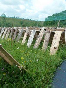 Escargots du Loir le parc - Le Clan des Sens