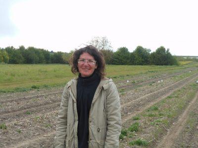 Stéphanie Cailleteau - Le Clan des Sens