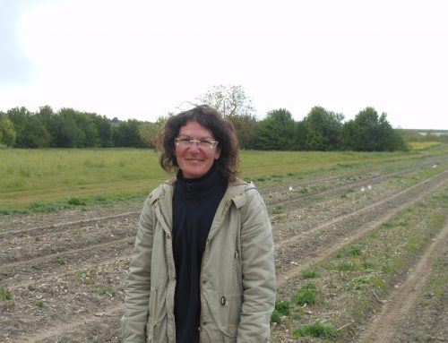 Stéphanie Cailleteau, le grand saut