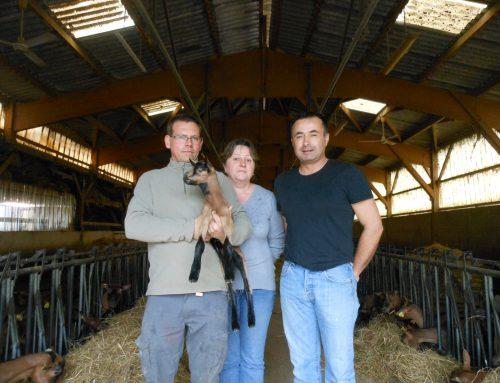 Corinne, Yann et Fabrice, le club des trois