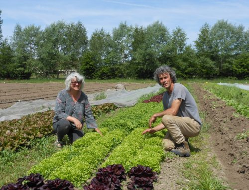 Christelle et Stéphane Neau, accompagnateurs de la nature